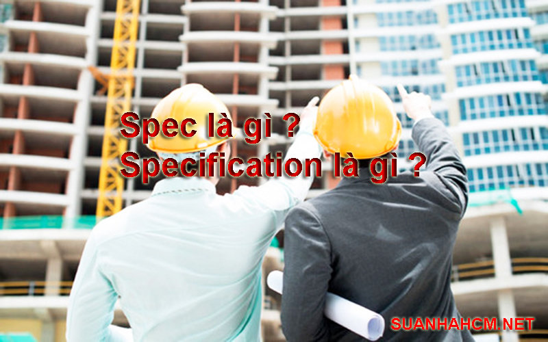 spec là gì